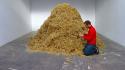 Finding the needle in a haystack